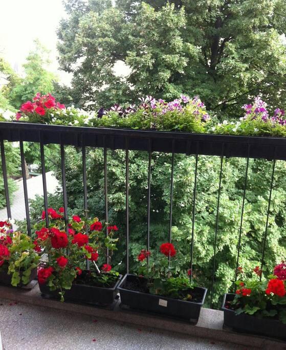 Amazung balcony