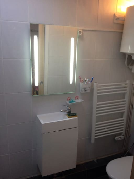 salle de douche avec radiateur sèche serviette, miroir éclairant ballon eau chaude de 50L chauffe en 2 heure. douchette pour les wc et douche spacieuse.