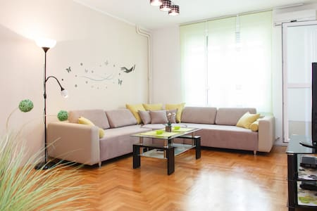 LOVELY flat in centar +  garage 5€ - Bělehrad - Byt
