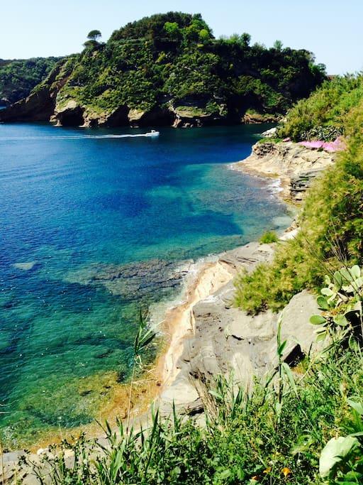 Sea view from the terrace - Veduta sul mare.