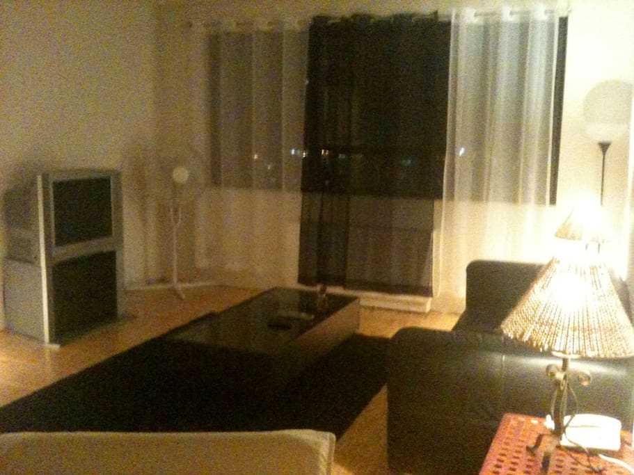 Living Area with a great view to DT & Lake Ontario