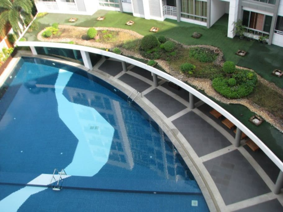 swimming pool and garden view