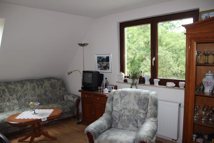 Schönes Zimmer (ÜF) nahe Neue Messe - Leipzig - Maison