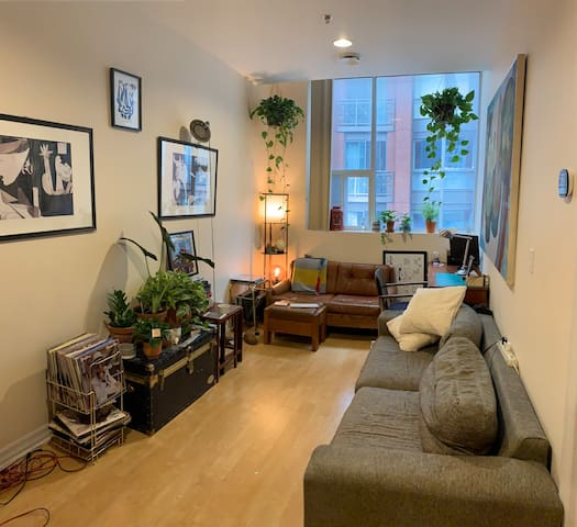 Private 1 Bedroom apartment on Queen W near TIFF
