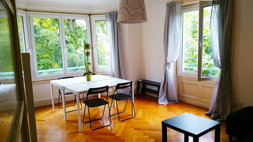Big and Renovated flat in Geneva - Chêne-Bougeries