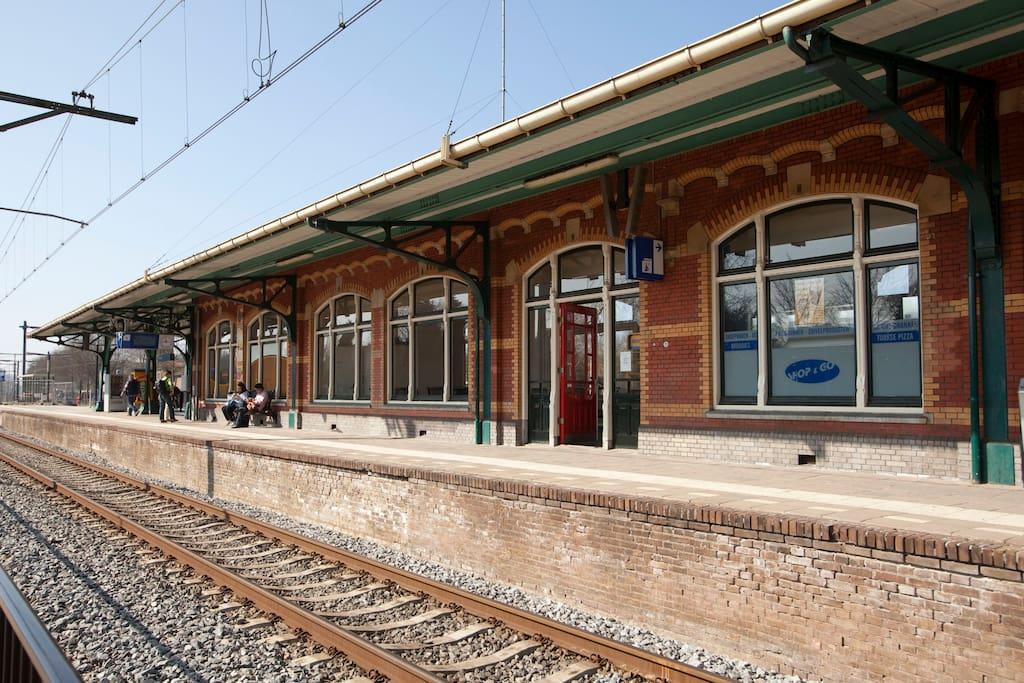 railwaystation, Dieren