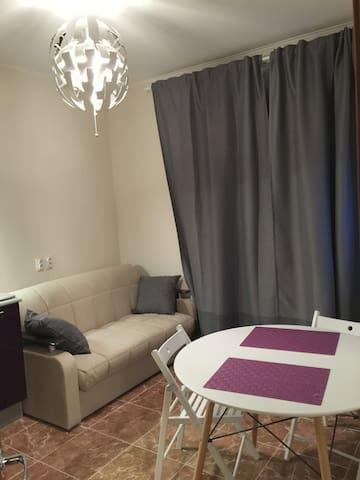 1,5 комнатная квартира Люберцы
