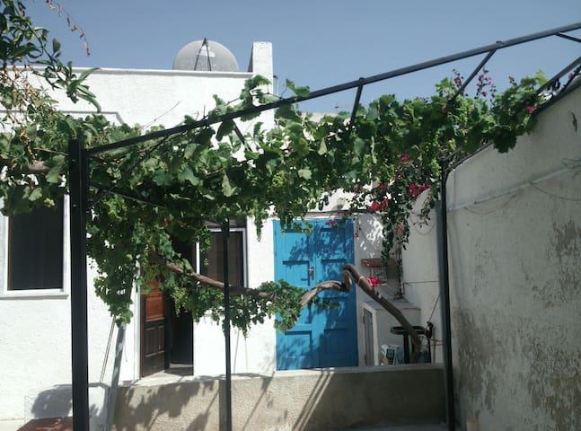 Monolocale Marettimo giardino