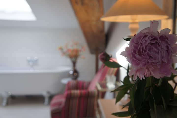 Boutique chambres d'hôtes Languedoc