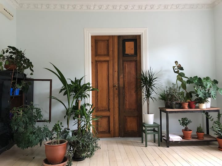 The Green Hideaway - in the heart of Oslo oldtown
