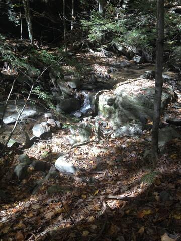 Into the Woods - Mount Tremper - Blockhütte