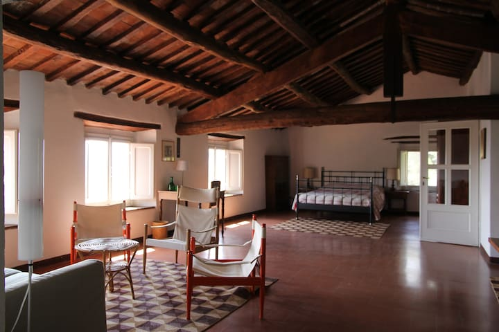 lovely home near Lucca, Tuscany - Lucca - Apartamento