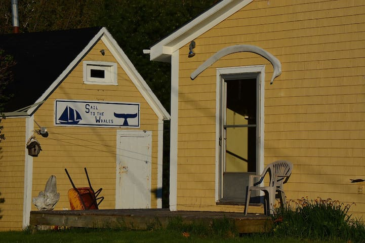 The Bosun's Chair...Ocean Beach... Sailing Lessons