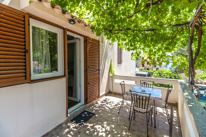 Studio Dragica 50m from the beach, terrace parking