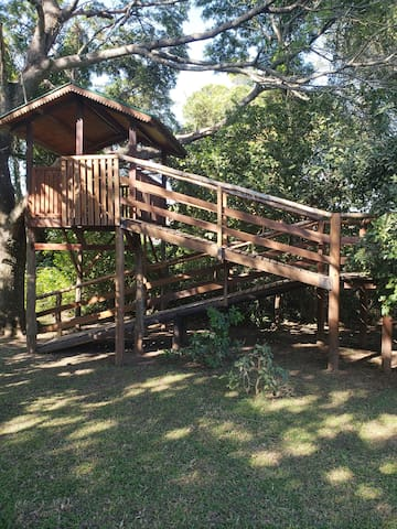 Tenemos casa del árbol hecha para nuestros nietos.Un adulto puede subir a disfrutarla.