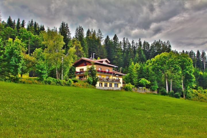 Austrian Alps Apartment - Altenmarkt im Pongau - Leilighet
