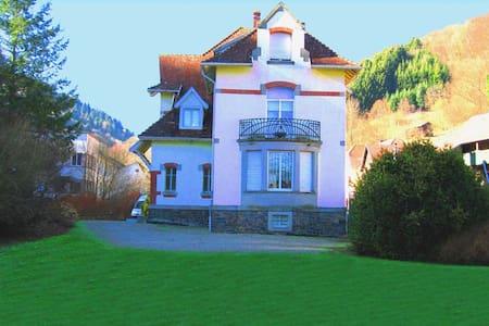 LES TILLEULS charmante chambre d'hôtes en ALSACE - Linthal, Haut-Rhin