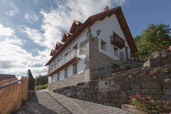 Casa rural Enekoizar - Abaurrea Alta - Ev