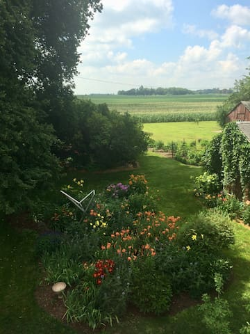 A view of the farm from the living room window in July.