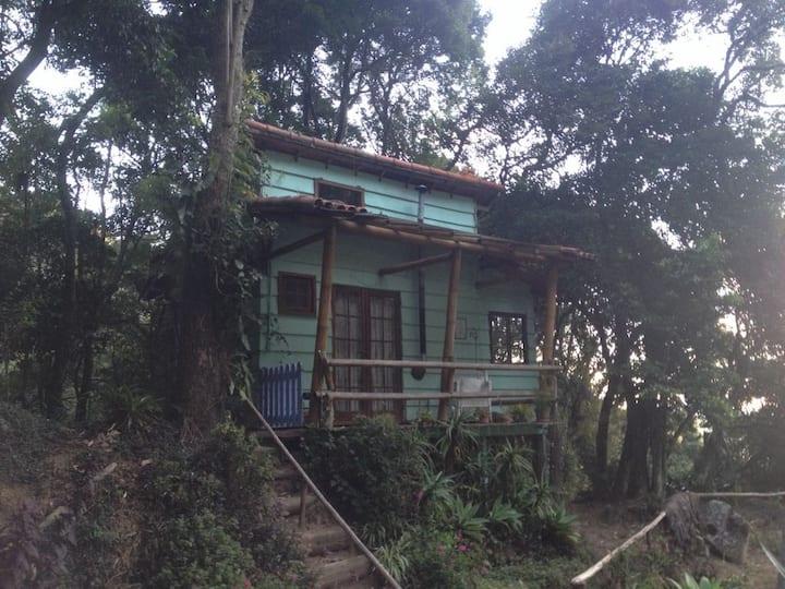 Chalés Bamboo Jungle Verde