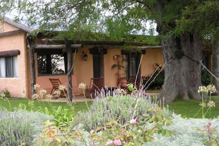 A beautiful farm house on 30 acres! - Solís