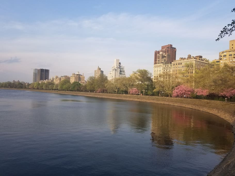 Ten minute walk to Central Park !