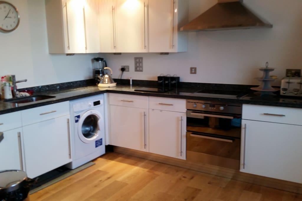 Luxury kitchen with all amenities and utilities