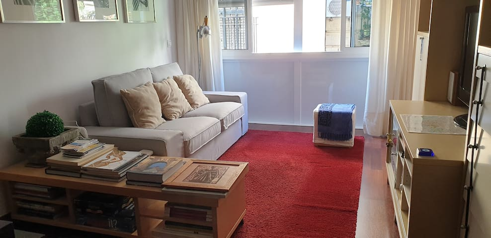 Apartment in the center of Seville