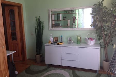 Comfortable 2-rooms and a kitchen apartment for 4