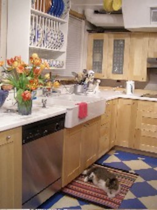 Modern kitchen, Farmer's sink, double oven and cooktop, checkerboard floor on ground level. Just roll your groceries right in from your car to the kitchen!