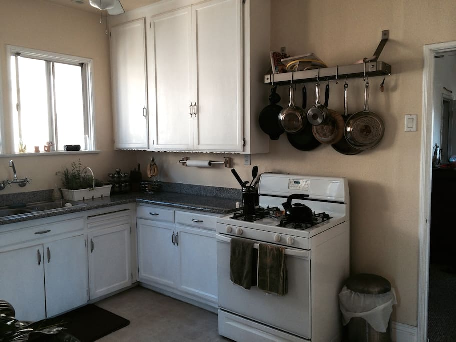 Fully equipped kitchen with fresh herbs.