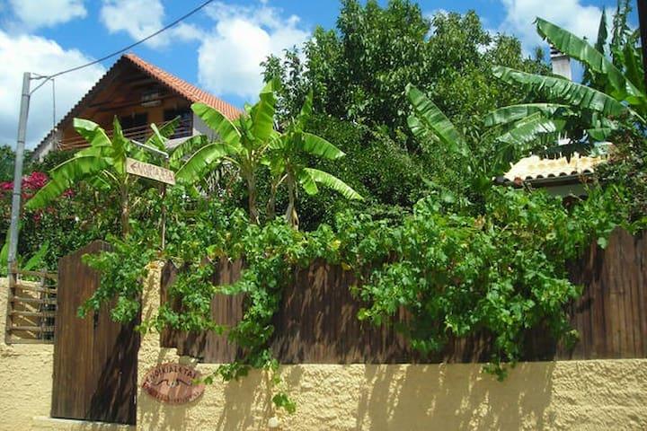 Traditional country house - Politiká