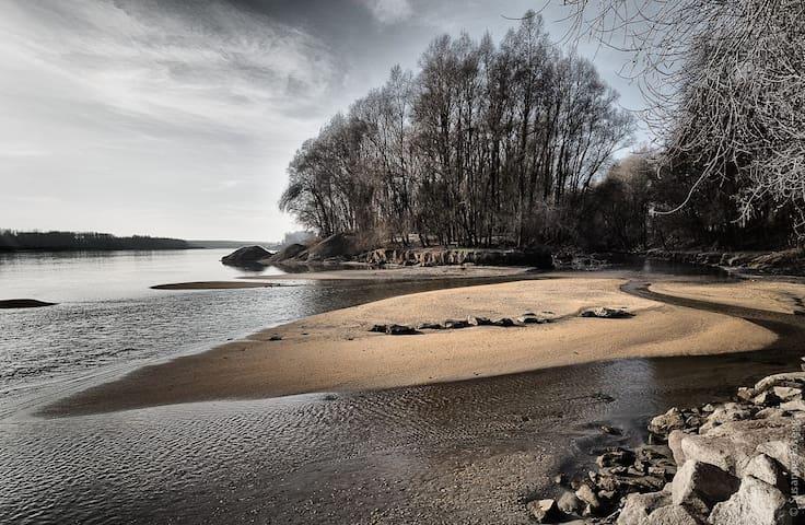 Danube beach shared loft - Ottensheim - Appartement