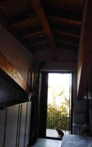 Affitto camera e casa in condivisione