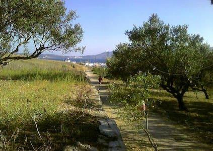 chez yiayia Tassoula - Adamantas