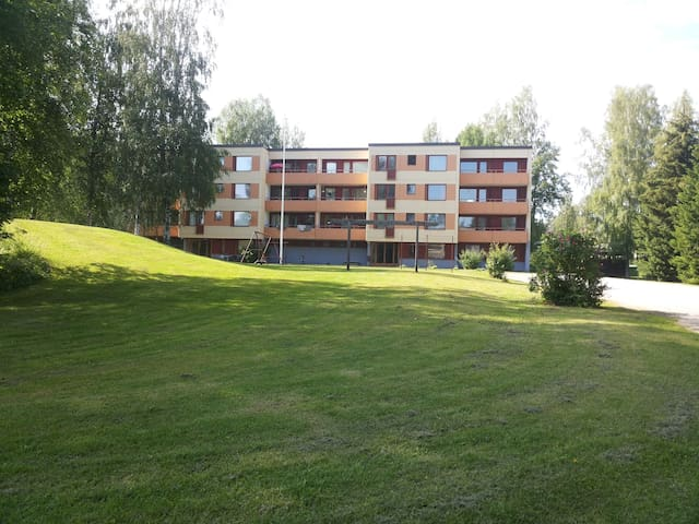 Finland is a great place to stay. - Punkaharju - Apartment