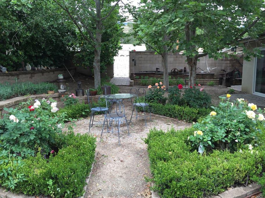 Back yard with lemon tree, fig tree, roses, swing, picnic table.