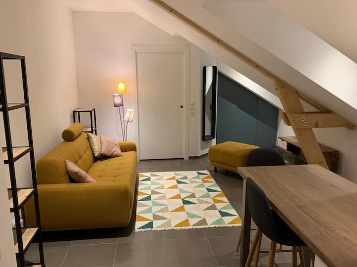 Charmant Studio neuf proche de Genève