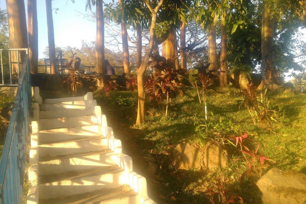 Parque de la colonia -  Community park