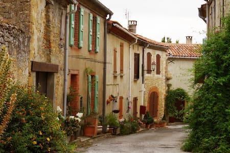 Maison Lauragaise dans un petit village de charme - Vaux - Dům