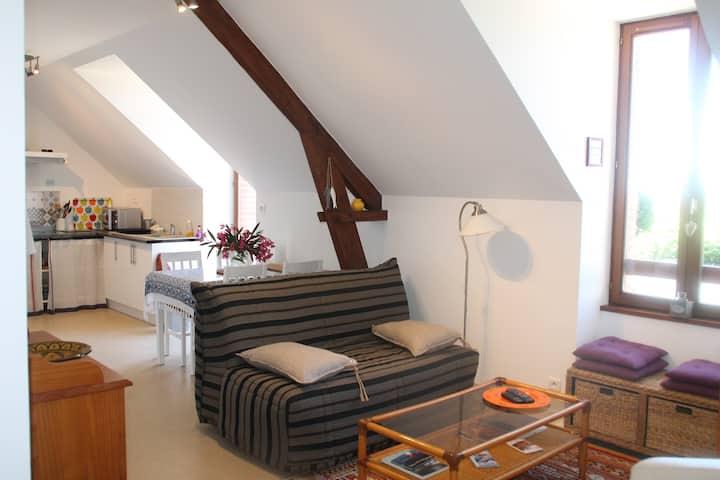 Joli appartement au coeur de Guérande