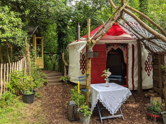 Bunnies yurt comfort in nature. Bere Ferrers Devon