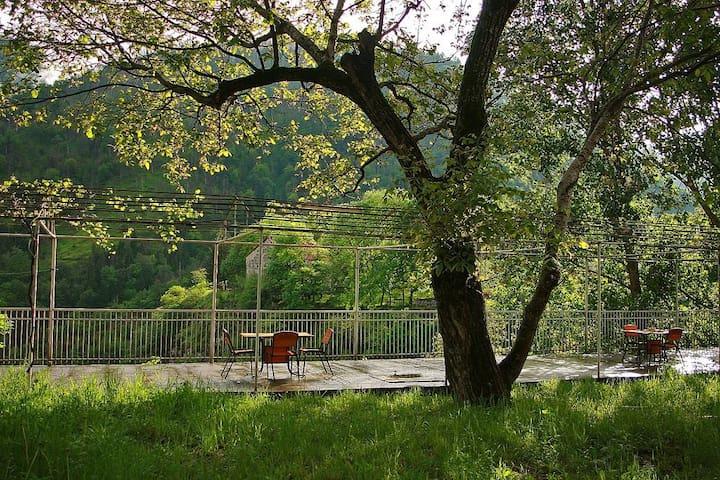 Villa Borjomi