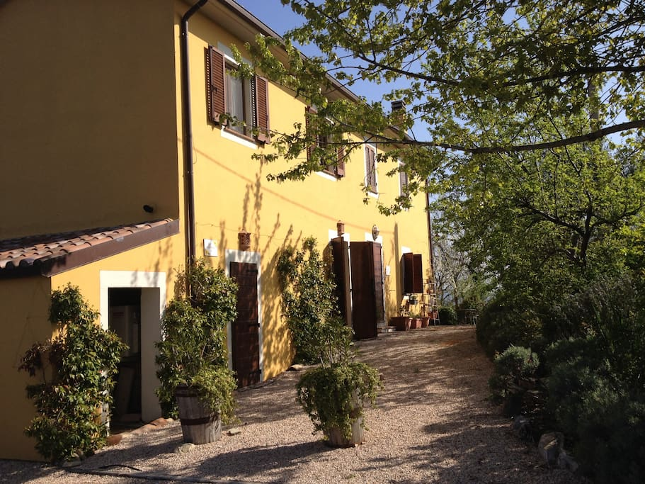 This is the front of Yellow House; your entrance is on this side.