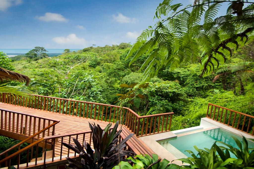 Welcome to Pura Vida Ecolodge - Awarded with a Certificate of Excellence for the last 4 years by Trip Advisor