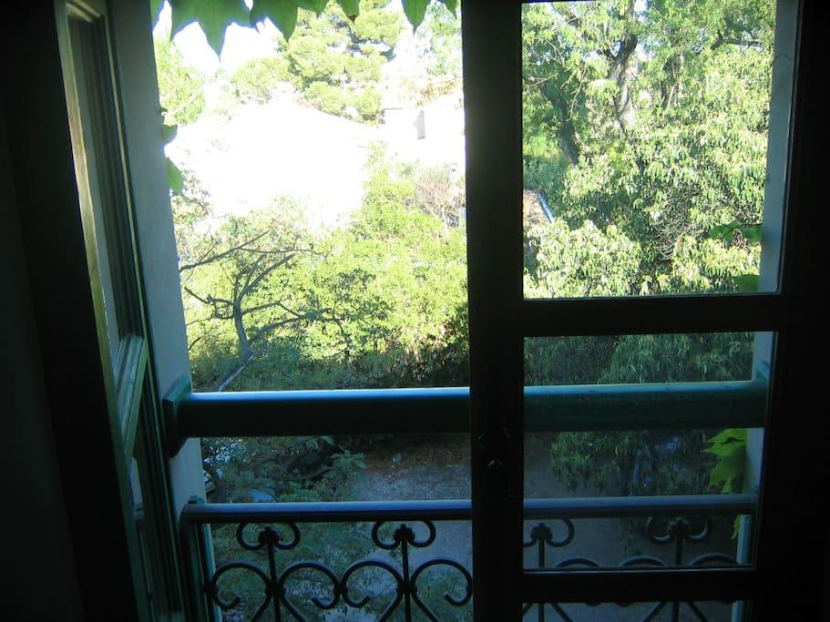 la fenêtre de la chambre