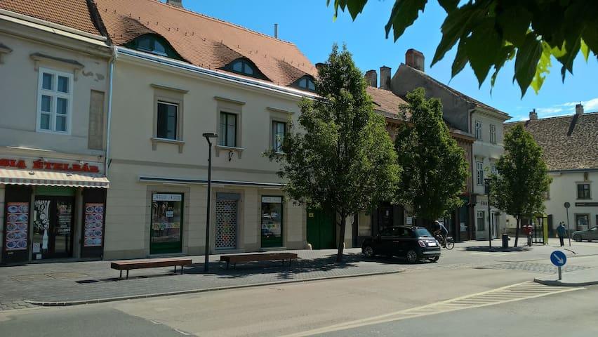 Sopron-Apartmanok a belváros szívében!