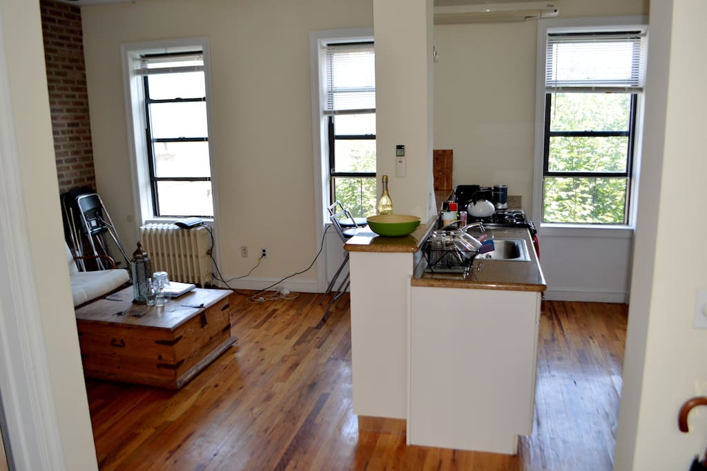 Fully furnished kitchen/living room with three large screened windows, overlooking a green space (peep the tree).
