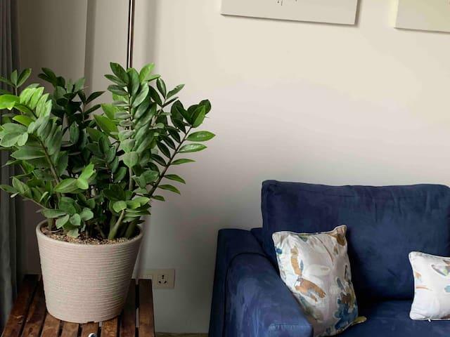 Fat bird : 2 Bedroom private stay + roof garden