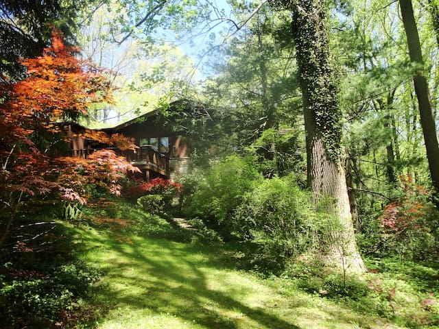 NATURE LOVERS DREAM CHALET-- TOWSON - Towson - Chatka w górach